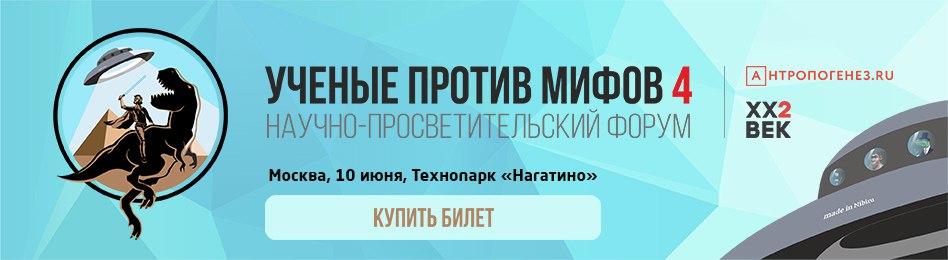 shapka1.jpg
