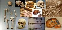 Некоторые находки неандертальцев, сделанные к 1974 году.