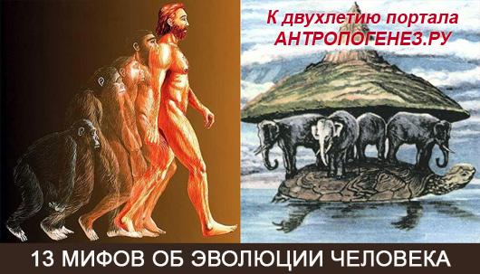 http://antropogenez.ru/uploads/tx_antropedia/%D0%B7%D0%B0%D1%81%D1%82%D0%B0%D0%B2%D0%BA%D0%B010.jpg