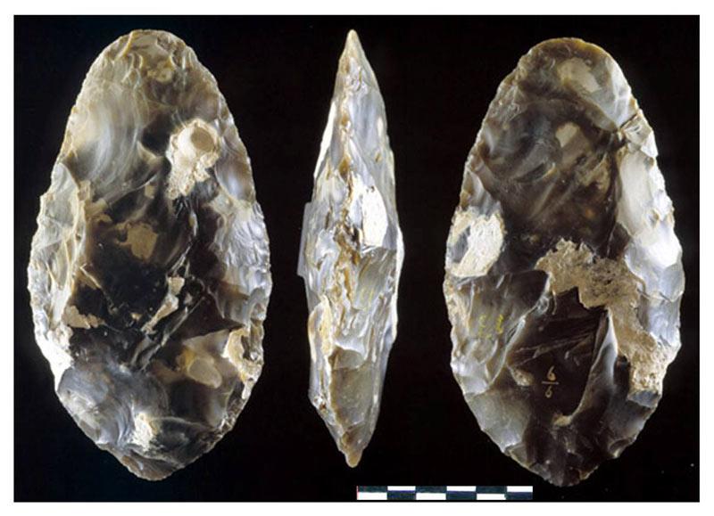 Ашель, ашельская культура. Ручные рубила, древние копья ...: http://antropogenez.ru/zveno-single/127/